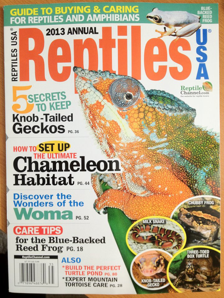 reptile-magazine